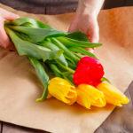 Walke - Produits - Papier de soie